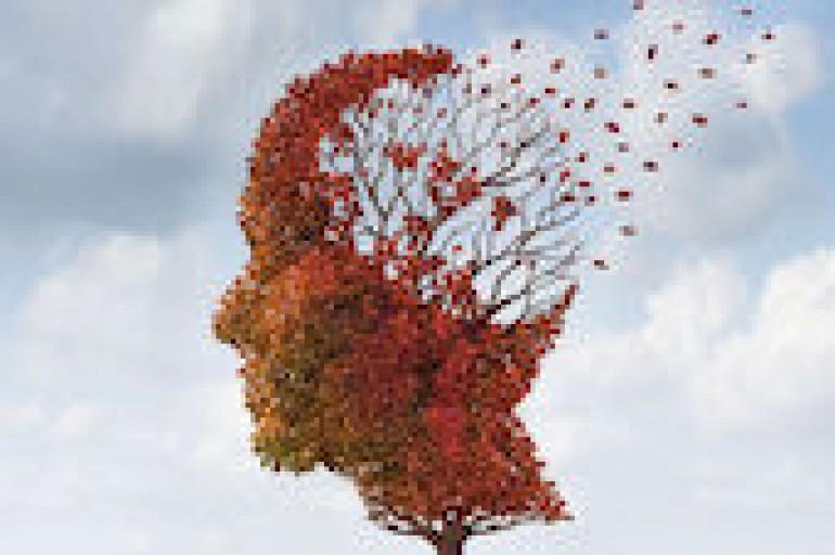 France Alzheimer programme 2019